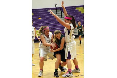 bh 2_7 girls freshman bball vs mehlville (2)