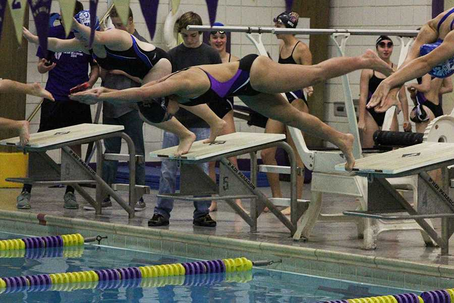 Leilani Mansy dives into the pool to start the first leg of the 200-yard freestyle relay during the home meet against Washington, Dec. 8. Her performance qualified her for state.