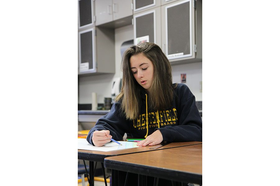 "Sydney Mayer (9) works on her folder in a during Mrs. Jessica Esfahani's Art Fundamentals seventh hour class, Jan. 6. ""I enjoy drawing,"" Mayer said. ""You can express yourself without anyone telling you how to do it."""