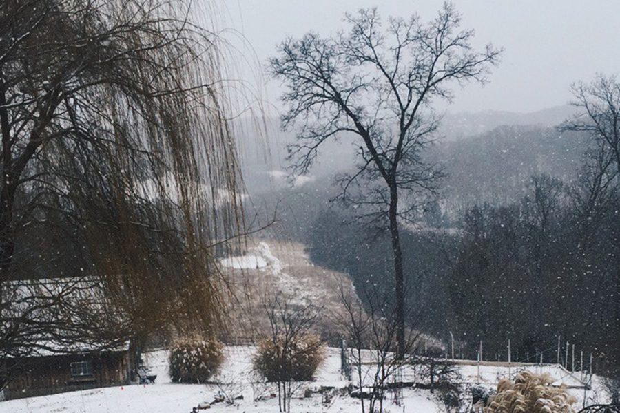 Students watched the first major snow fall of the year from their homes as they enjoyed a snow day, Jan. 5.