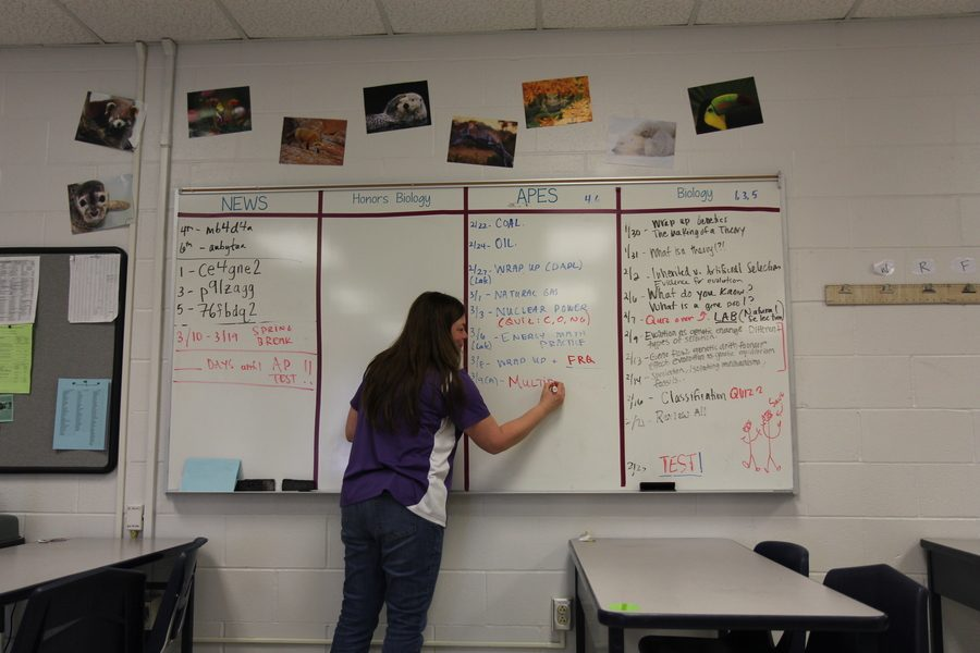 A+photo+illustration+of+Mrs.+Kotraba+writing+on+her+board++in+class.