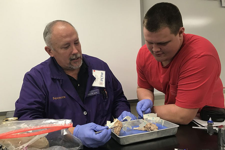 Keith Baremore, Science, and Bennett Lyday (11) get their hands dirty while examining the parts of the brain.