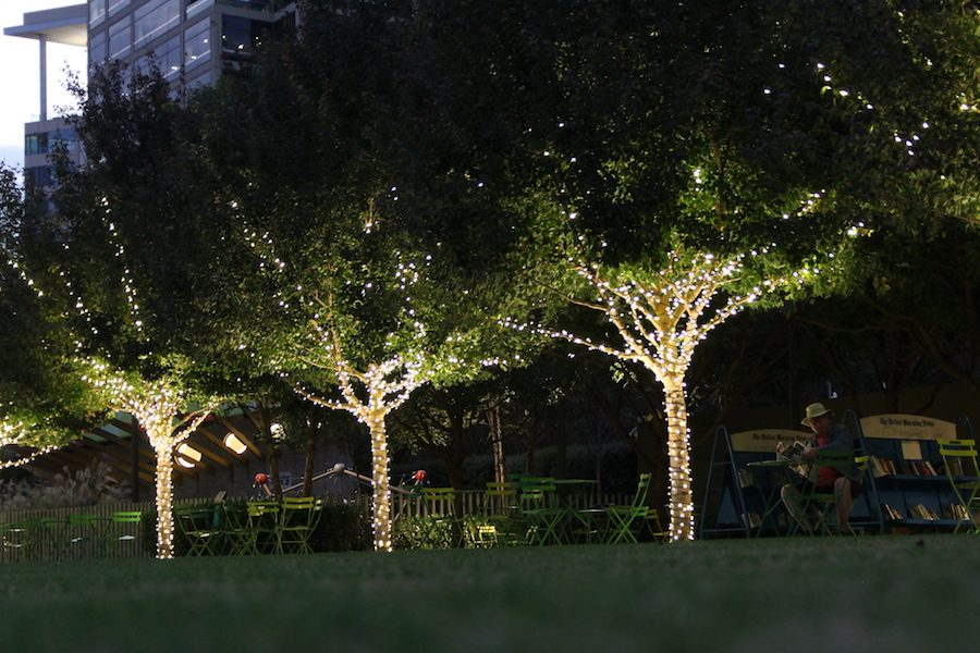 Night on its way, trees in the Klyde Warren Park are decorated with holiday lights in Dallas, Texas, Nov. 15. With the holidays closely approaching, the new tax reform bill claims that  taxpayers can spend money on the holidays instead of in taxes.