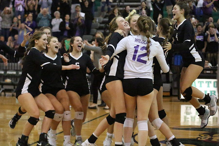 """Final set over, the girls varsity volleyball team celebrates after their victory over Francis Howell Central at Pattonville, making them sectionals champions. The team is now moving onto the state games for the first time in school history. """"We haven't made it past districts since 1996,"""" Avery Crowder, setter said. """" It was super exciting. Eureka volleyball has never been to state. It is super exciting to be a part of the team that is making it to state for the first time in history. I think we definitely deserve it. We have all worked so hard and I am so proud of all of my teammates. I know we are going to do great at state. The games this weekend can go anyway. All four teams that are going, [Willard, St. Theresa, Lafayette and Eureka] are good. They are all going to be great games. Lafayette is our biggest competitor. We have always had that fight with them. We lost to them earlier in the season on a close game, but we have been working on our blocks and making sure we can shut down their hitters so we can win."""" They will play at The Show Me Center in Cape Girardeau in the Final Four game on Friday, Nov. 1. If the Wildcats win, they will move on to play the State Championship game on Saturday, Nov. 2."""