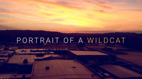 Portrait of a Wildcat 2019