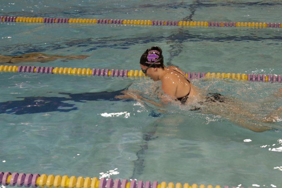 Dani+Glass+swims+breast+stroke+in+Eureka%27s+meet+against+Washington%2C+December+1.+